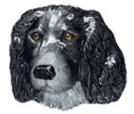 Spaniel Belt Buckle with display stand. Product code WA1